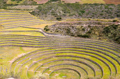 Ancient Inca circular agricultural terraces at Moray used to study the effects of different climatic conditions on crops. Stock Image