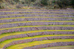 Ancient Inca circular agricultural terraces at Moray used to study the effects of different climatic conditions on crops. Royalty Free Stock Photo