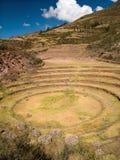 Ancient Inca circular terraces Royalty Free Stock Image