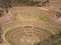 Ancient Inca circular terraces Stock Images