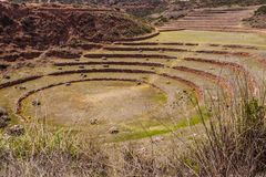 Ancient Inca circular terraces at Moray agricultural experiment station, Peru, South America royalty free stock photography