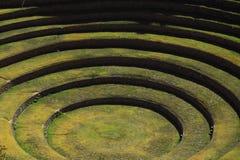 Ancient Inca circular terraces at Moray Royalty Free Stock Images