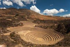 Ancient Inca Circular Terraces at Moray, Peru Stock Images