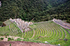 Ancient Inca Ruins. Along the Inca Trail in Peru stock images