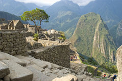 Ancient Inca ruins of Machupicchu Stock Photography