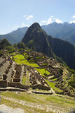 Ancient Inca ruins of Machupicchu Stock Images