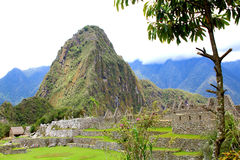 Ancient Incan city of Machu Picchu, Peru Royalty Free Stock Images