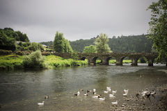 Ancient Irish bridge and village landscape. Irish village landscape with ancient bridge and stream with swans Stock Photo