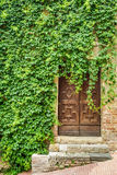 Ancient ivy-clad house with wood door Stock Images