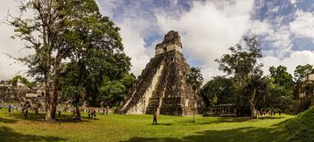 Ancient Jaguar Maya temple in Tikal, Guatemala. Green colours royalty free stock photos