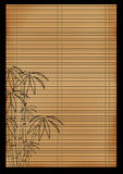 Ancient Japanese reed mat Stock Image