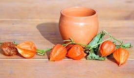 Ancient jar with orange plant of Physalis alkekengi Royalty Free Stock Photography
