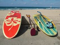 Stand-up Paddling Stock Image