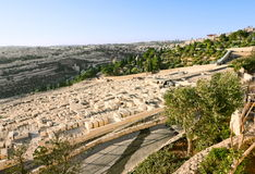 Ancient Jewish cemetery on the Mount of olives Royalty Free Stock Image