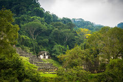 Ancient Jungle Building. Ancient Building in the middle of the jungle, Palenque mexico Stock Photos