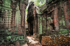 Ancient Khmer architecture. Ta Prohm temple at Angkor, Siem Reap, Cambodia Royalty Free Stock Photo