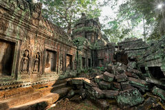Ancient Khmer architecture. Ta Prohm temple at Angkor, Siem Reap, Cambodia Stock Photo