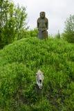 Ancient kurgan stelae in the Khortytsia isalnd, Zaporizhia, Ukraine. Stone babas Royalty Free Stock Photos