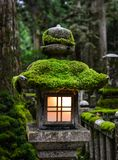 Ancient lantern at pine tree forest. A stone lantern at ancient cemetery on Sacred Mount Koya Koyasan in Wakayama, Japan Royalty Free Stock Photography