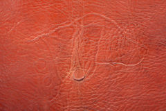 Ancient leather product with a stamping. In the form of a dog Royalty Free Stock Image