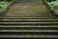 Ancient lichen-covered stone steps Royalty Free Stock Photo