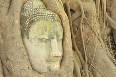 Ancient Lord Buddha Statue Stock Photography