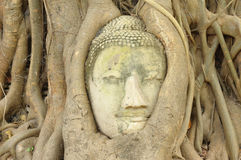 Ancient Lord Buddha Statue Stock Images