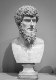 The ancient marble portrait bust Royalty Free Stock Image