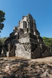Ancient maya building at Muyil Chunyaxch Archaeological site, Quintana Roo, Mexico.  Stock Image