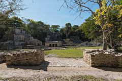 Ancient maya building at Muyil Chunyaxch Archaeological site, Quintana Roo, Mexico.  Royalty Free Stock Image