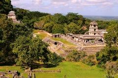 Ancient maya city of Palenque XI Royalty Free Stock Photo