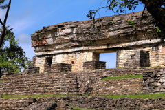 Ancient maya city of Palenque XIII Stock Photography