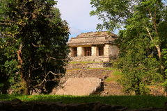 Ancient maya city of Palenque XVI Royalty Free Stock Photography