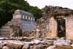 Ancient maya city of Palenque XXIII Stock Image