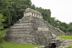 Ancient Maya temple in Palenque Royalty Free Stock Photo