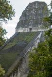 Ancient Maya temple in Tikal Stock Photo