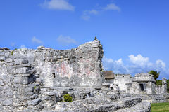 Ancient Mayan building ruins against blue sky in Tulum, Yucatan Royalty Free Stock Photo
