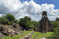 Ancient Mayan pyramid. In Tikal Guatemala royalty free stock photos