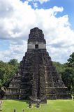 Ancient Mayan pyramid. In Tikal Guatemala Stock Image