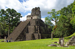 Ancient Mayan pyramid. In Tikal Guatemala Royalty Free Stock Image