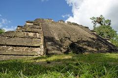 Ancient Mayan pyramid. In Tikal Guatemala royalty free stock photo