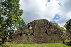 Ancient Mayan pyramid. In Tikal Guatemala Stock Photo