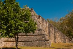 Ancient Mayan pyramid with steps. The old ruined city of the Maya. Chichen-Itza, Mexico. Yucatan.  royalty free stock images