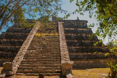 Ancient Mayan pyramid with steps. The old ruined city of the Maya. Chichen-Itza, Mexico. Yucatan.  stock photo