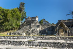 Ancient Mayan pyramid in Tikal Guatemala Stock Photos