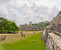 Ancient mayan ruin in Palenque, Chiapas, Mexico Stock Images