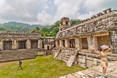 Ancient mayan ruin in Palenque, Chiapas, Mexico Royalty Free Stock Photo