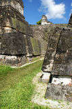 Ancient Mayan ruins. In Tikal Guatemala Royalty Free Stock Photo
