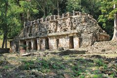 Ancient Mayan stone ruins at Yaxchilan, Chiapas, Mexico Royalty Free Stock Photo