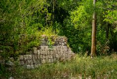 Ancient Mayan ruins overgrown with plants in the Mexican jungle stock image